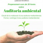 auditoria-ambiental